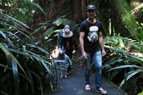 Australian National Botanical Gardens