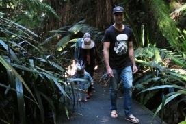 Australian National Botanical Gardens