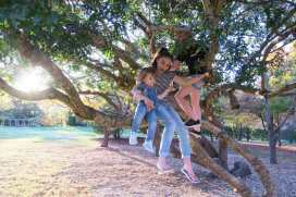 Climbing trees at the park over the road